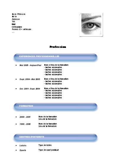 roney tattoo  exemple de curriculum vitae